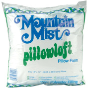 Mountain Mist Pillowloft Pillowforms, 30cm -by-30cm