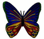 Butterfly Vibrant Blue Green Yellow Red Excellent Detail Iron on Patch D41