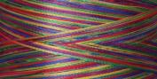 Rainbows Thread 500 Yards-Tapestry