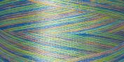 Rainbows Thread 500 Yards-Northern Lights