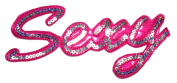 Blink Silver Pink Sexy Girl DIY Applique Embroidered Sew Iron on Patch