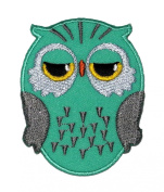 Cute Green Owl Cartoon DIY Applique Embroidered Sew Iron on Patch