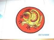 Fighting Golden Dragon Round 15cm Patch