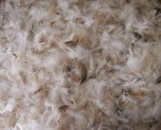 Bulk Goose Down Pillow Feathers - 10/90 Natural - lb