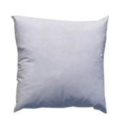 60cm x 60cm Feather/Down Pillow Form White By The Each