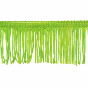 Chainette Fringe 10-Yard Polyester Fringe Rolls for Arts and Crafts, 5.1cm Long, Lime