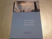 The Fragile City & the Risk Nexus