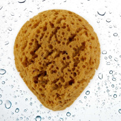Large All-Natural Water Drop Shaped Faux Sea Foam Body Sponge - Extra Absorbant for Rich, Vibrant Skin