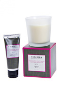 Rosewater Driftwood scented 240ml Candle and 90ml /85gHand Balm