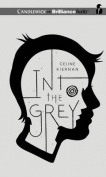 Into the Grey [Audio]