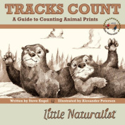 Tracks Count