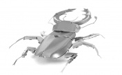 Fascinations MetalEarth 3D Laser Cut Model - Stag Beetle