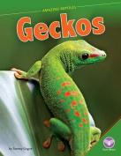 Geckos (Amazing Reptiles)