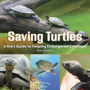 Saving Turtles