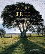 Glory of the Tree