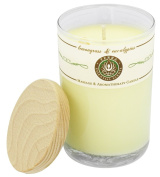 Terra Essential Scents - Massage & Aromatherapy Soy Candle Lemongrass & Eucalyptus