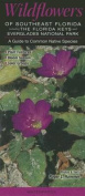 Wildflowers of Southeast Florida Including the Florida Keys & Everglades National Park  : A Guide to Common Native Species