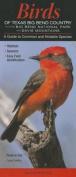 Birds of Texas Big Bend Country Incl. Big Bend National Park & Davis Mtns.