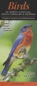 Birds of North Carolina, South Carolina & Georgia  : A Guide to Common & Notable Species