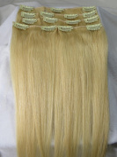 80cm 10pcs Wholesale140g #1/#2/#4/#613/#8/#60 2014 Fashion Trend Human Hair Remy 100% Human Hair Straight Clips in Extensions