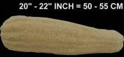 Whole Egyptian Organic Natural Scrubber Sponge LOOFAH LOFA LOOFA Exfoliation