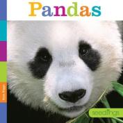 Seedlings Pandas (Seedlings)