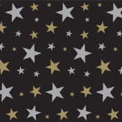 Beistle 52102 Star Backdrop, 1.2m by 9.1m