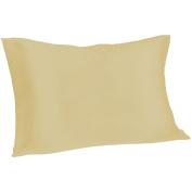 Spasilk 100% Pure Silk Pillowcase for Facial Beauty and Hair Health, Standard/Queen, Champagne