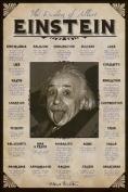 Albert Einstein - Quotes Poster Art Print Wisdom