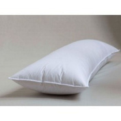 Down & Feather Full Support Body Pillow 50cm X 150cm