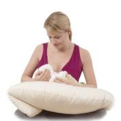 Moonlight Slumber Butterfly Breastfeeding Pillow with Organic Case