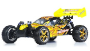 1/10 2.4Ghz Exceed RC Forza .18 Engine RTR Nitro Powered Off Road Buggy
