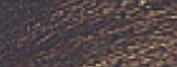 Oil Colour 40ml Van Dyke Brown