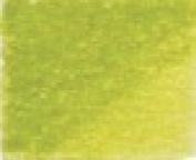 Conte Pastel Pencil Olive Green