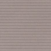Clapboard Siding/Grey