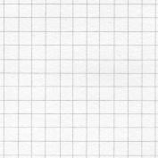 0.6cm Graph Layout Sheets 46cm x 60cm