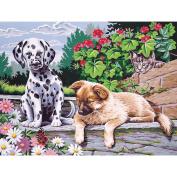 Paint By Number Kit 30cm x 41cm
