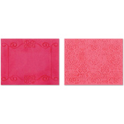 Sizzix Textured Impressions A2 Embossing Folders 2/Pkg-Scroll Frame & Succulent By BasicGrey