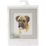 Boxer On Aida Counted Cross Stitch Kit-20cm - 1.9cm x 27cm 12 Count