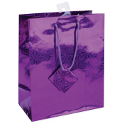 Holographic Gift Bags 18cm x 23cm -Glossy Assorted Colours