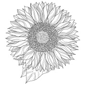 IndigoBlu Cling Mounted Stamp 13cm x 10cm -Sunflower