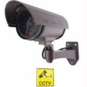 Streetwise Security Products DC1100 13cm  IR Dummy Camera in Circular Outdoor Housing with Light