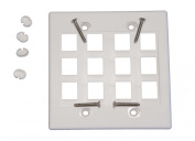 White Dual Gang 12 Port Keystone Wall Plate For Data Home Theatre Audio Video