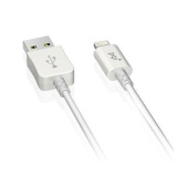 PQI 6PCB-001R0002A White i-Cable 100CM Lightning Cable for iPhone5 / iPad4 Cable