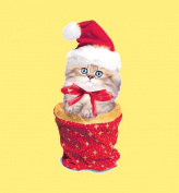 Hi-Look Microfiber Cleaning Cloth - Christmas Kitten