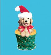 Hi-Look Microfiber Cleaning Cloth - Christmas Puppy
