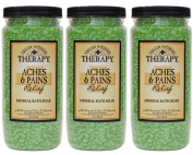 Village Naturals Therapy Aches & Pains Mineral Bath Soak 590ml