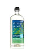 Bath & Body Works Aromatherapy Stress Relief Eucalyptus Basil Body Wash 300ml