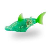 Green Hammerhead Shark