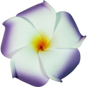Foam Flower Medium Hair Clip Plumeria Lilac, White